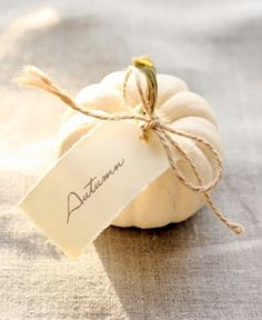 Best Thanksgiving Decoration By Using White Thanksgiving: Fascinating Details White Pumpkins And Cream Tablecloth With Price Tag Autumn Applied Tender White Thanksgiving Decor Ideas