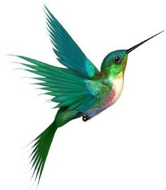 Flying Hummingbird Tattoo Design
