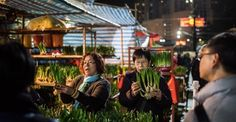 26 beautiful photos from Lunar New Year celebrations around the globe: Bulbs with eight stems are considered good luck — that's what these customers are looking for at a flower market in Hong Kong.