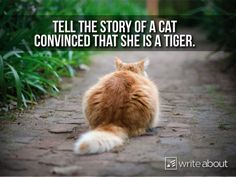 "spencerauthor:  ""Her name is Tiger. She is convinced that she is an actual tiger.  """