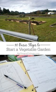 Start organic gardening with these 10 basic steps and you'll be growing your own vegetables this year!: