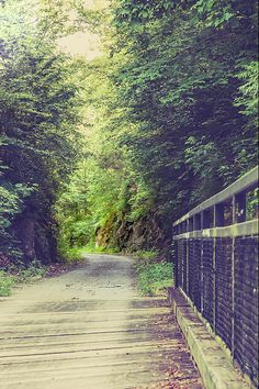 #bike, #trail, #tunnelhill, #Illinois #Vienna