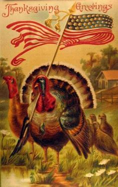 Patriotic Thanksgiving Turkey with American Flag Antique Postcard Thanksgiving Blessings, Thanksgiving Greetings, Vintage Thanksgiving, Thanksgiving Turkey, Vintage Holiday, Vintage Halloween, Fall Halloween, Vintage Fall, Thanksgiving Traditions