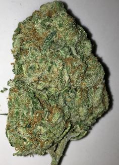 Tangie Strain is a cross of California Orange, an even sativa/indica hybrid, and a Skunk strain strong, sweet flavor reminiscent of tangerines and other citrus fruits. Tangie is sativa-heavy uplifting cerebral high with enhanced creativity and euphoria THC 22% not for novices treats ADD/ADHD, Bipolar Disorder, Chronic Pain, Depression, Fatigue, Loss of Appetite, Migraines, Stress