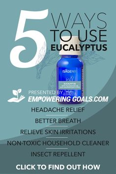 Eucalyptus oil by Isagenix is a cool crisp and refreshing scent that has many natural health benefits such as headache relief, cold and cough symptoms. Contains from pure Essential oils, no additives Essential Oil Blends For Colds, Essential Oil Safety, Essential Oils For Sleep, Essential Oil Uses, Natural Essential Oils, Eucalyptus Oil, Eucalyptus Essential Oil, Health Benefits, Health Tips