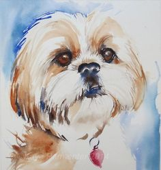 Shih Tzu by Kaye Parmenter
