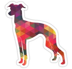 Italian Greyhound - Iggy - Colorful Geometric Pattern Silhouette by TriPodDogDesign