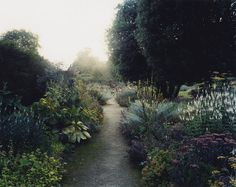 """salonduthe: """"Mike Perry, Gold Border 1 Parham House, Sussex, 2009 """""""