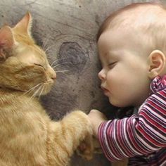 Friends fist bump even in their sleep - baby and cat  hands to paws - #S0FT PIN MIX