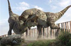 A pair of Tyrannosaurus Rex fighting (Prehistoric Park) Dinosaur Art, The Good Dinosaur, Prehistoric Dinosaurs, Dinosaur Fossils, Prehistoric Creatures, Walking With Dinosaurs, T Rex Jurassic Park, Jurassic Park World, Jurassic World