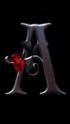 K Letter In Rose ... Letter's With Rose on Pinterest | iPhone, Letter b and Red roses