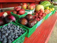 Berry Hill Fruit Farm Rainbow Fruit July 2013