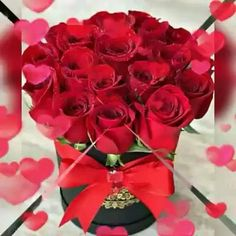Good Morning Beautiful Gif, Good Morning Images Flowers, Good Morning Roses, Good Night Love Images, Beautiful Flowers Images, Beautiful Flowers Wallpapers, Flower Images, Beautiful Roses, Happy Birthday Greetings Friends