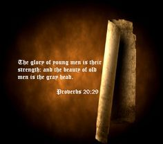 Proverbs 20:29