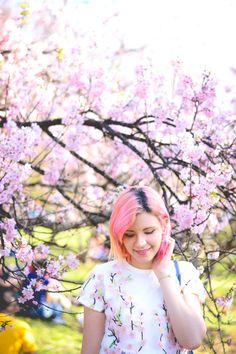 Vlog: Festa das Cerejeiras | O Mundo de Jess