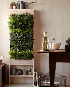 Free Standing Vertical Garden - Urban Gardening, Bitch!
