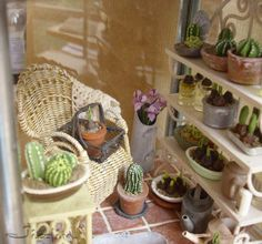 potting shed in a lantern, not in English. I really like the idea. so clean and neat Z