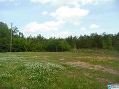 Youll love the quiet serenity of the this land.  Enjoy being surrounded by nature, lots of tall trees, plenty of wildlife and open vistas of hillsides and forest.  This is an ideal spot for a home, cabin or just a special getaway place.   The property is secluded yet only minutes away from shopping, restaurants and downtown Columbiana.  There is an existing home site on the property with established service available for power, water (well), a septic system and phone.