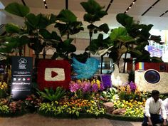 Flowers social network