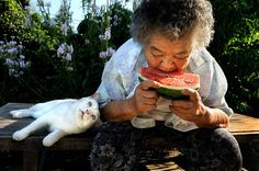Eighty-eight-year-old Misa found her odd-eyed kitty, Fukumaru, abandoned in a shed. Now the two are basically inseparable. - LINK