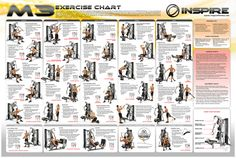 41 Best MULTI GYM images in 2018 | Exercise workouts