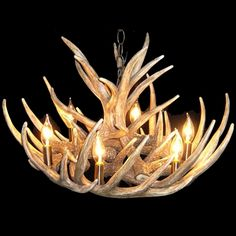 Antler Featured, Chandelier, with 6 Lights