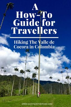 A How-To Guide for Travellers Hiking The Valle de Cocora | Colombia | Travel Guide | South America Travel | Backpacking Colombia | Colombian Itinerary Recommendations | Hiking Tips and Tricks | Best Hikes Colombia