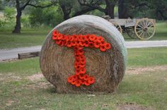 Round bale of hay with couple initials of Gerbera Daisies - Old Glory Ranch
