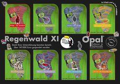 Opal Sock Yarn Rainforest series # 11 aka XI,  75% wool 25 nylon 100g 462y superwash fingering by HandDyedSockYarn on Etsy https://www.etsy.com/listing/241566581/opal-sock-yarn-rainforest-series-11-aka