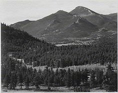 "aam-18.gif (600×476) 	""In Rocky Mountain National Park,"" panorama with trees in foreground, barren mountains in background."
