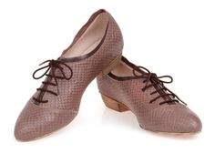 Snake Skin Pattern Grey Leather Shoes / Taupe Flat Shoes / Lacing Shoes / Evening Shoes / Short Wood Heel Shoes / Every Day Shoes - Thomas