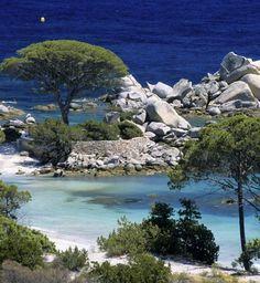 La plage de Palombaggia en Corse http://abnb.me/e/1Bw4yfnlSC