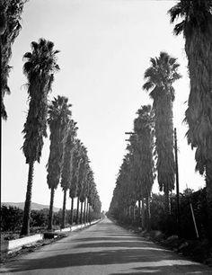 Larkellen ave, West Covina, CA Looking south towards Valinda California History, Vintage California, California Dreamin', Vintage Pictures, Old Pictures, Old Photos, San Gabriel Valley, Crazy Ex Girlfriends, Places In America
