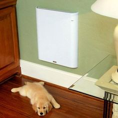 Envi High-Efficiency Electric Panel Heater | cool to the touch convection heater for rooms 130-150 sq ft $140