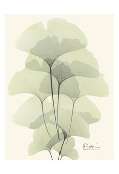 Albert Koetsier, Art and Prints at Art.com