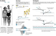 The Physics of Olympic Bodies (rowing) (NPR)