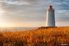 Beautiful moment to spirit, Lighthouse - Iceland - by Florian Trykowski
