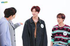 030620 nct 127 on weekly idol Weekly Idol, Taeyong, Nct 127, Nct Dream, Boy Groups, Sunshine, Honey, Nikko