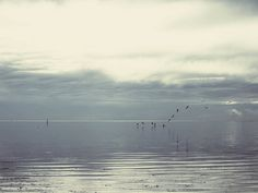 Silent Sea Song by this fleeting life: Photograph