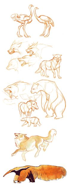 Random animals by Drkav