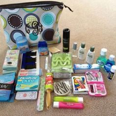 Zipper pouch holds all this (makes a great travel bag)