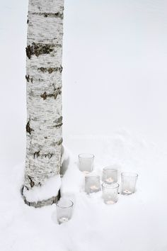 """""""And all is lit by candlelight amid the fallen snow."""" - Enya, Amid the Falling Snow, from the album Amarantine. I Love Winter, Winter Snow, Winter White, Winter Christmas, Fall Winter, Xmas, Winter Colors, Fall Pictures, Winter Scenes"""