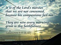 Lamentations 3:22-23 KJV -@gmx0 #BaptistMemes