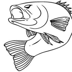 sea bass coloring pages - photo#20