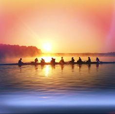 Ex-rower and coxswain. Row Row Your Boat, Row Row Row, The Row, Rowing Sport, Rowing Crew, Coxswain, Rowing Workout, Indoor Track, Track And Field