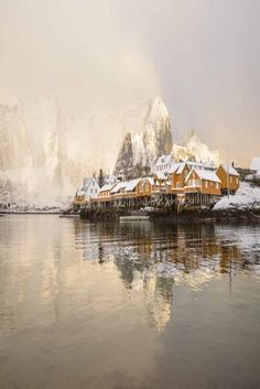 Sakrisoey Rorbuer- Specialty Lodging in Reine, Norway.