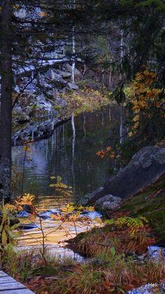 Isokuru, Pyhätunturi, Finland