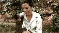 Monkey Insists on Feeding Person
