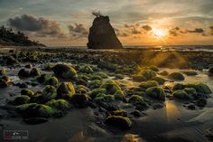 Turtle Beach by Marcellian Tan on 500px