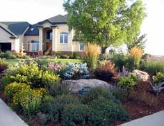 would love to xeriscape our front yard.